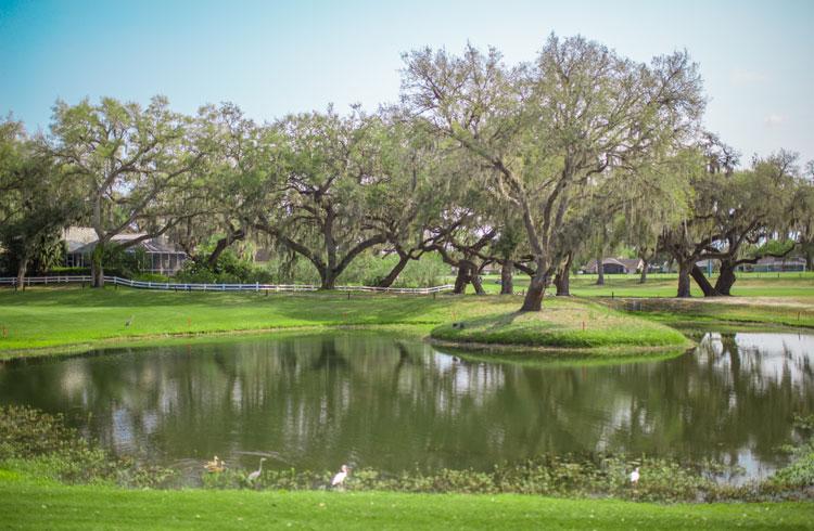 Silverado Country Club >> Welcome To Silverado Golf And Country Club Silverado Golf